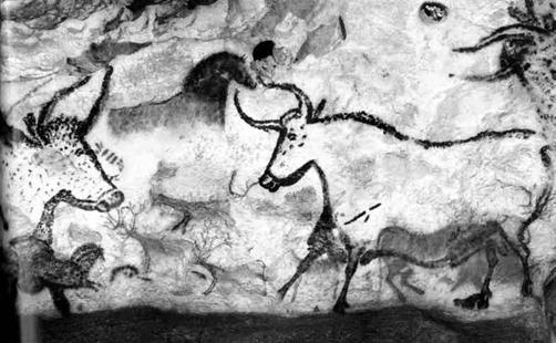 Figura 8.2 - A fianco graffiti nelle Grotte di Lascaux, un complesso di caverne che si trova nella francia sud-occidentale. Nelle grotte si trovano esempi di opere d'arte risalenti al paleolitico superiore. Il tema più rappresentato è quello dei grandi animali dell'epoca.